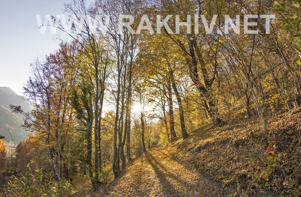 рахів_фото_осінь