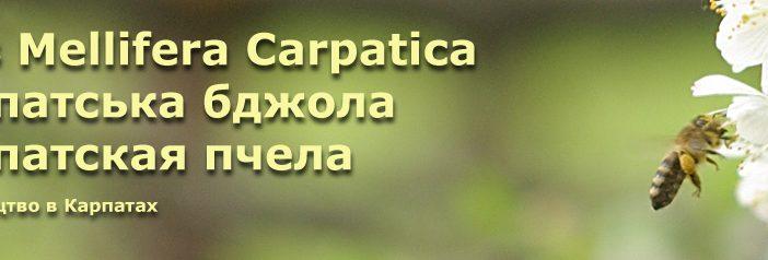 Інформує Рахівська районна спілка пасічників.