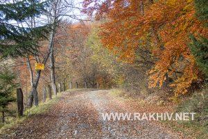 рахів_осінь_фото