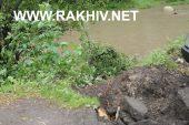 Через негоду у м.Рахів впало дерево в р.Тиса. Фото.