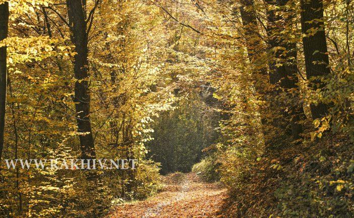 Рахів осінь 2018 фото. (Оновлюється).