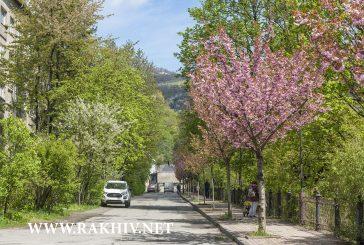 Рахів весна фото 2020, та Рахівський район